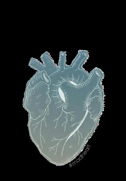 maglietta HEART