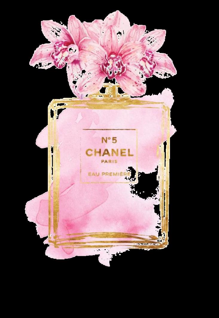 maglietta Chanel ??