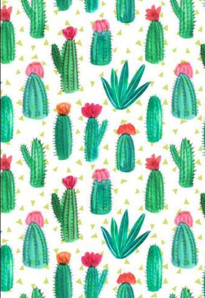 maglietta Trasparent cactus