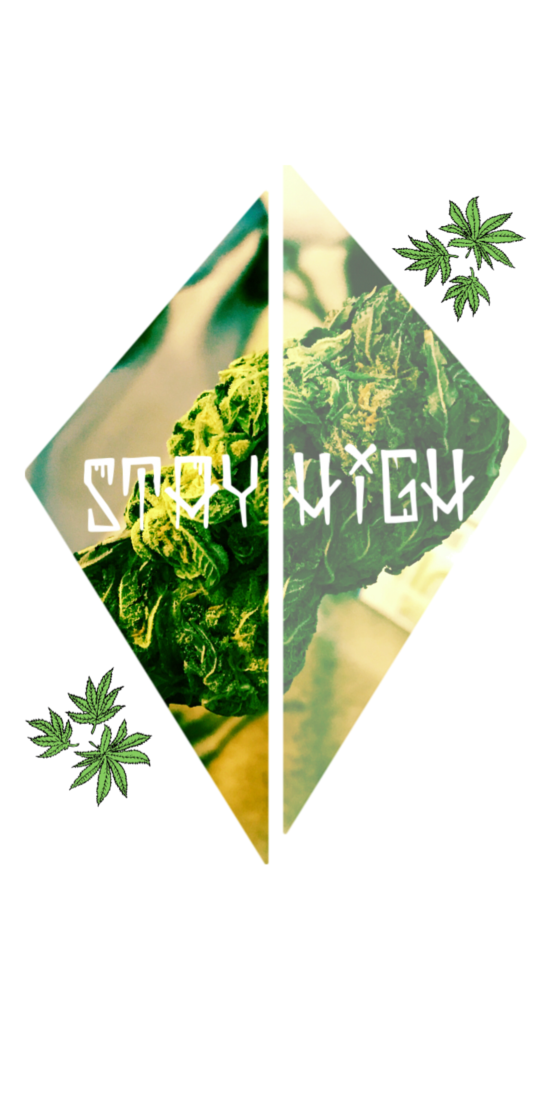 cover StayHigh