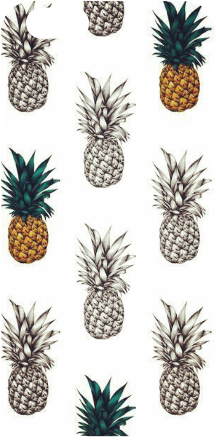 cover T-ananas