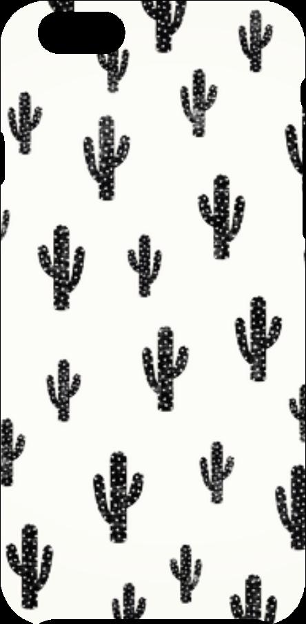 cover Black cactus