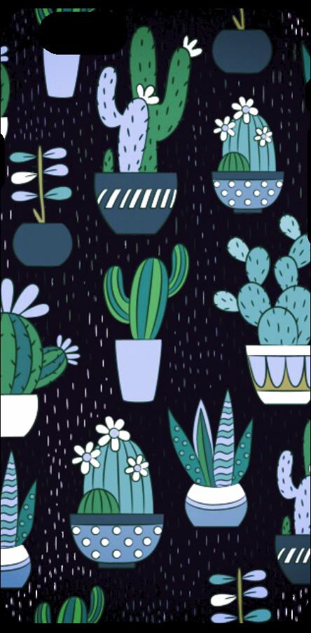 cover Big cactus