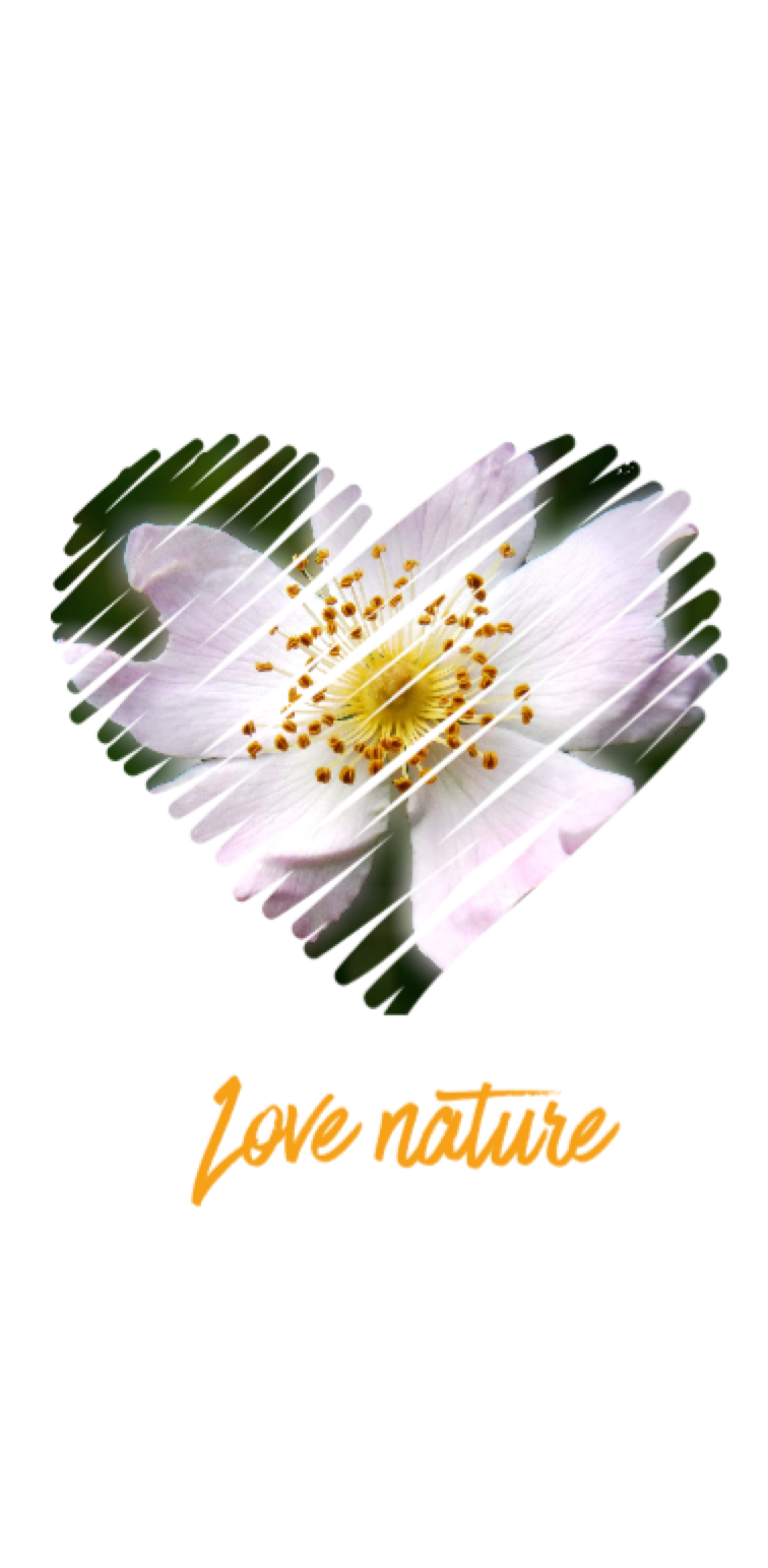 cover love nature 1