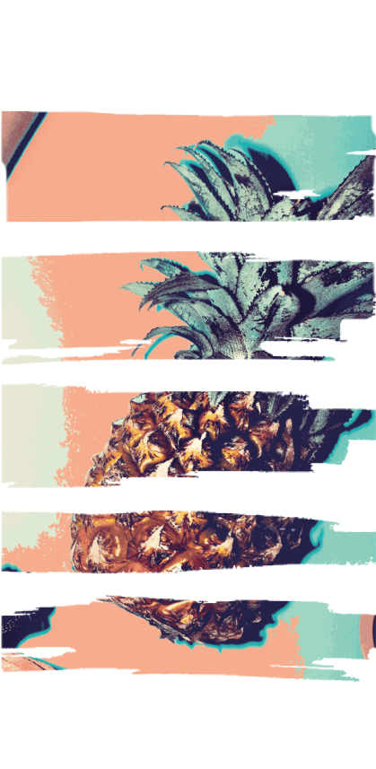 cover #ananas zebrata