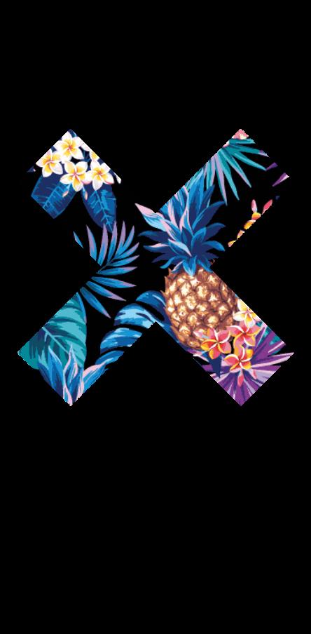 cover XX