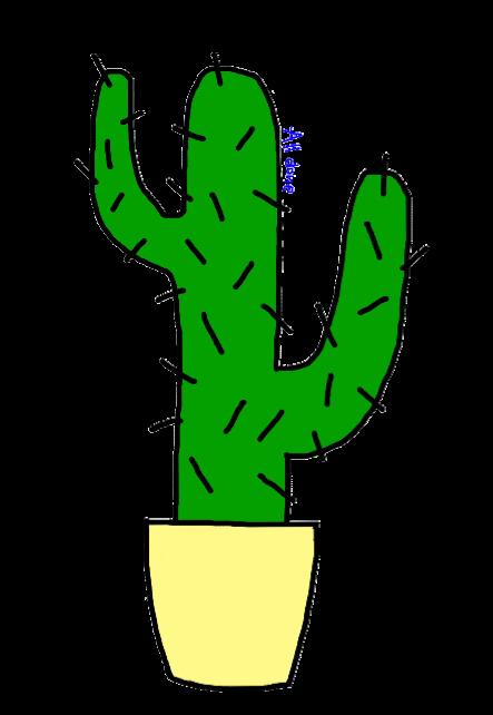 maglietta Cactus T-Shirt