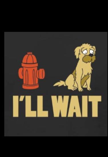 maglietta FRY'S DOG