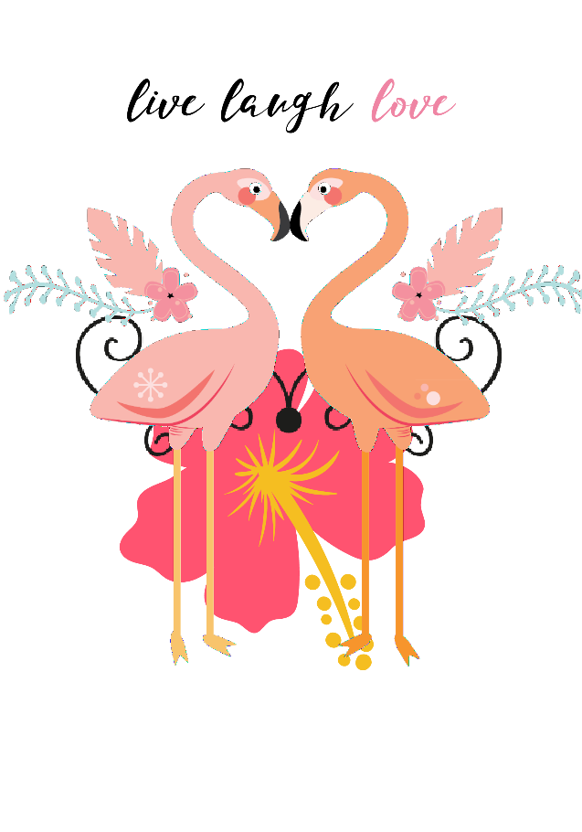 maglietta love flamingo