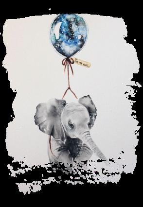 maglietta elefante