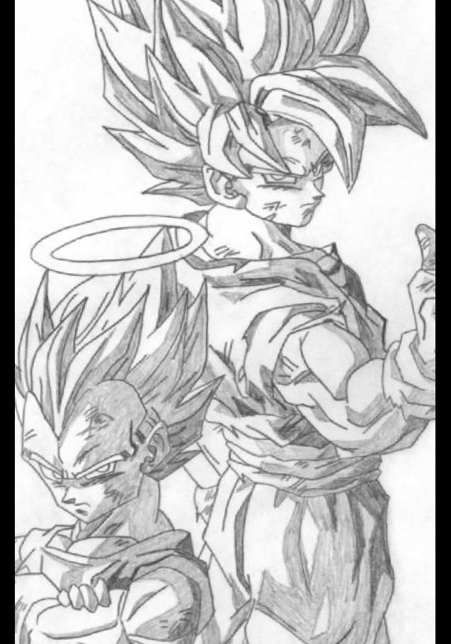 maglietta DB Goku e Vegeta