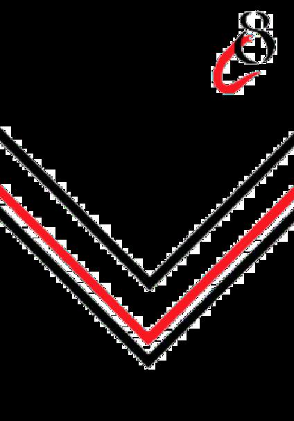 maglietta Cre8 Apparel Red V Design