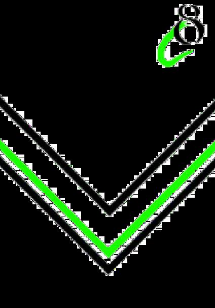 maglietta Cre8 Apparel Green V Design