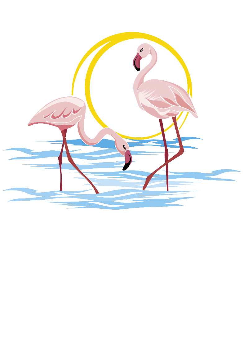 maglietta Flamingo teechallenge