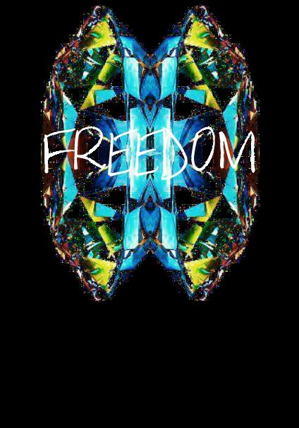 maglietta Butterfly