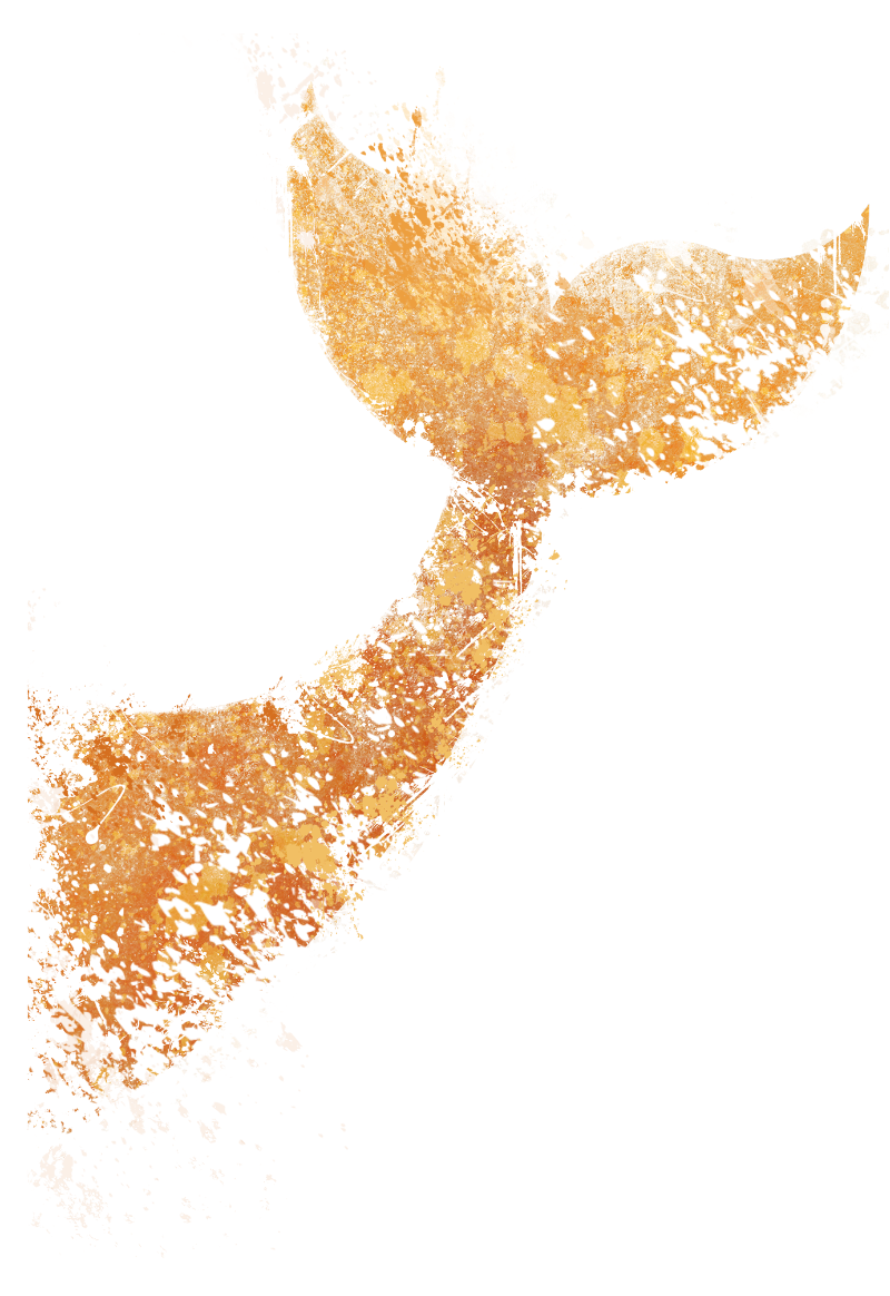 maglietta Orange Whale