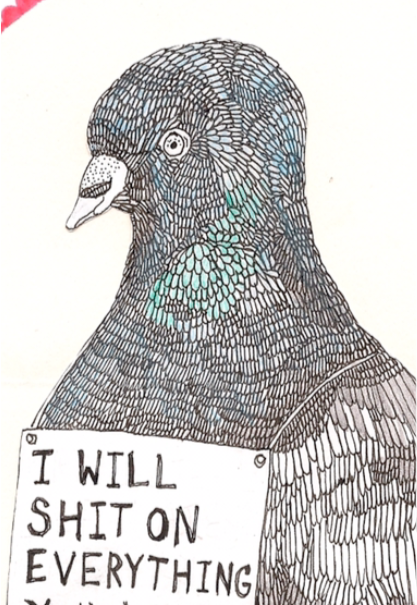 maglietta vita da piccione