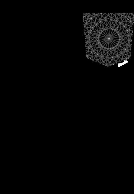 maglietta Squared circle