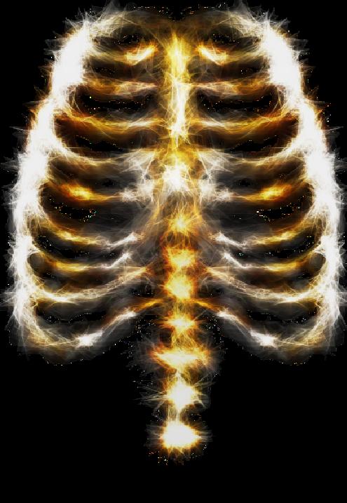 maglietta skeleton