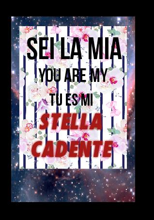 maglietta Stella