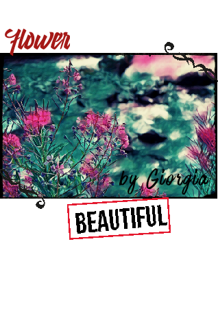 maglietta summerVibes