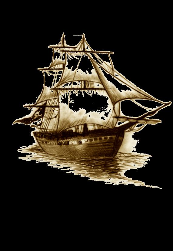 maglietta he's pirate
