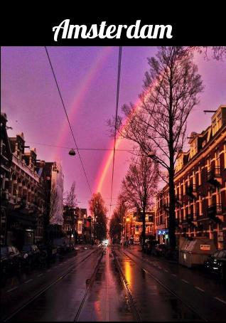 maglietta Amsterdam
