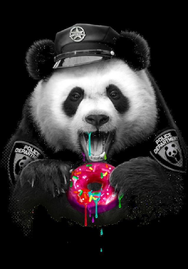 maglietta PANDA LOVES DONUTS