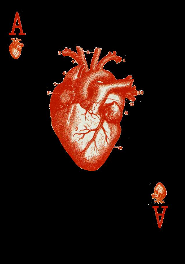 maglietta HEART POKER