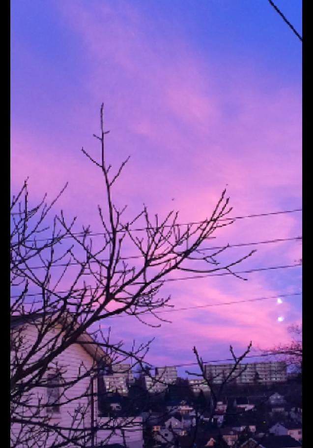 maglietta sunset