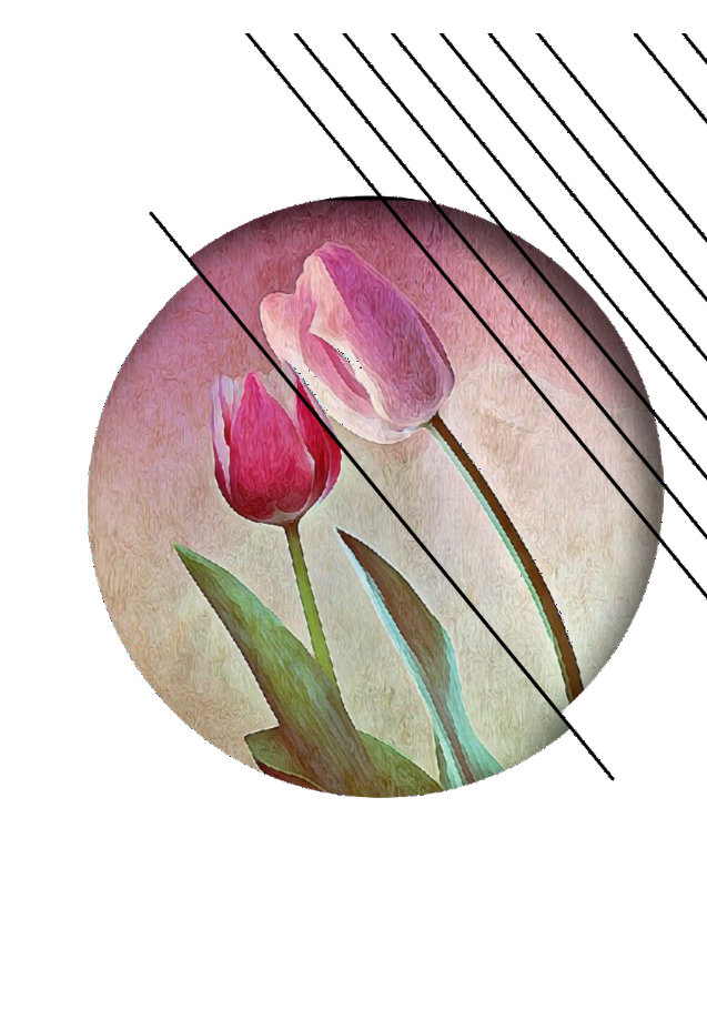 maglietta Tulipani Innamorati