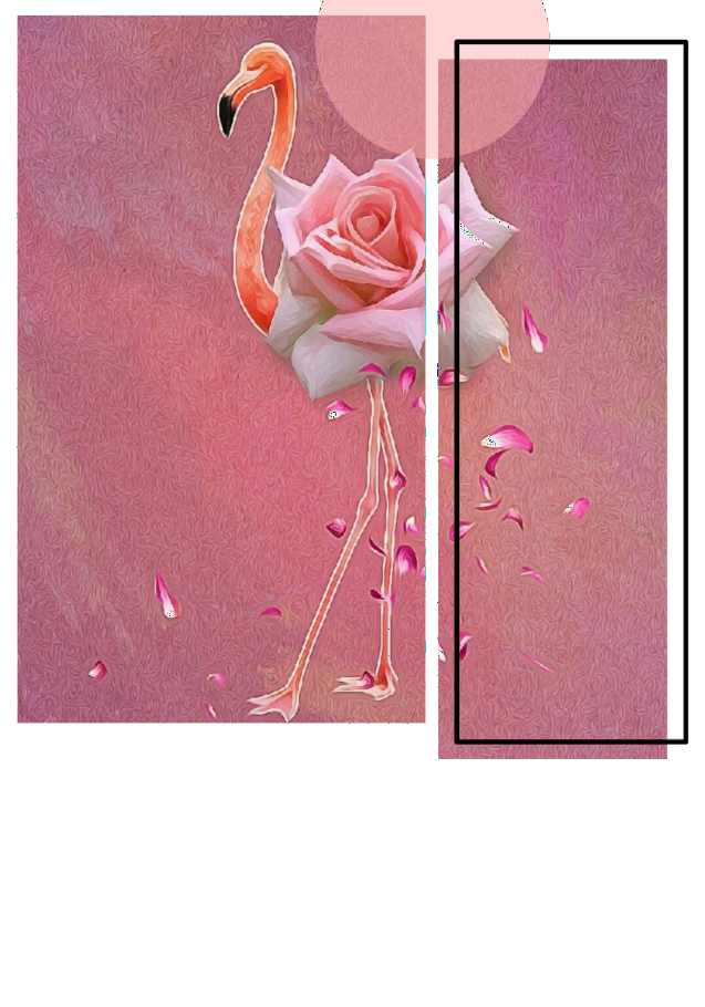 maglietta Flamingo 'Rosa'