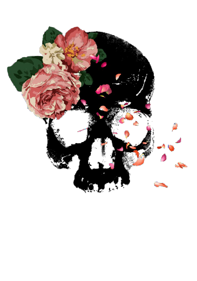 maglietta Skull