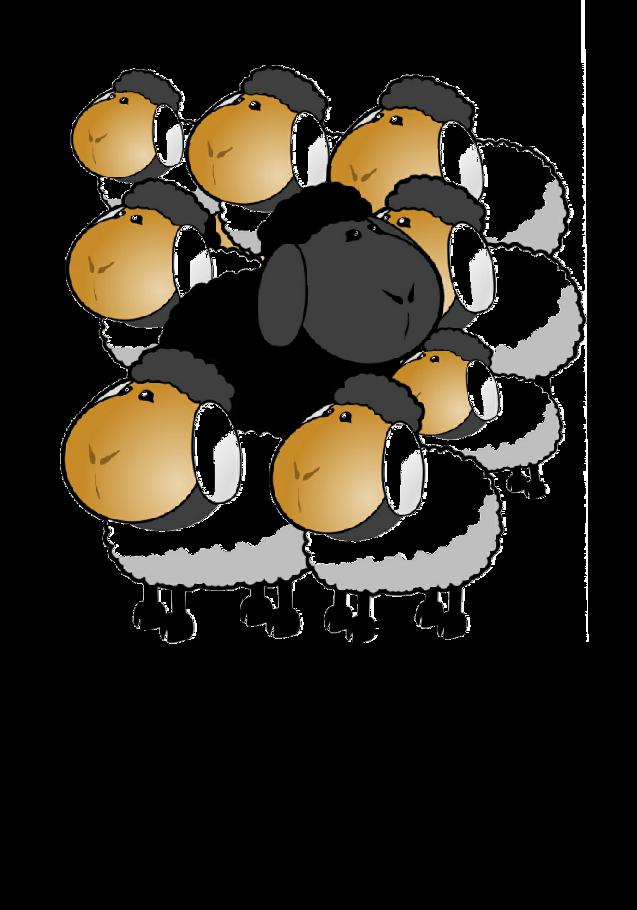 maglietta Pecora Nera