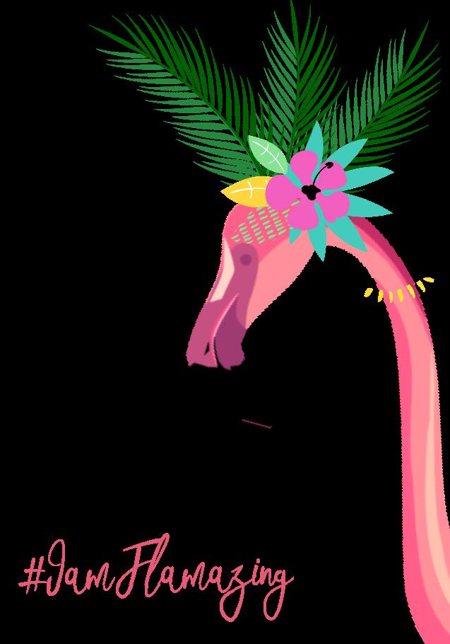 maglietta Flamingo Girl