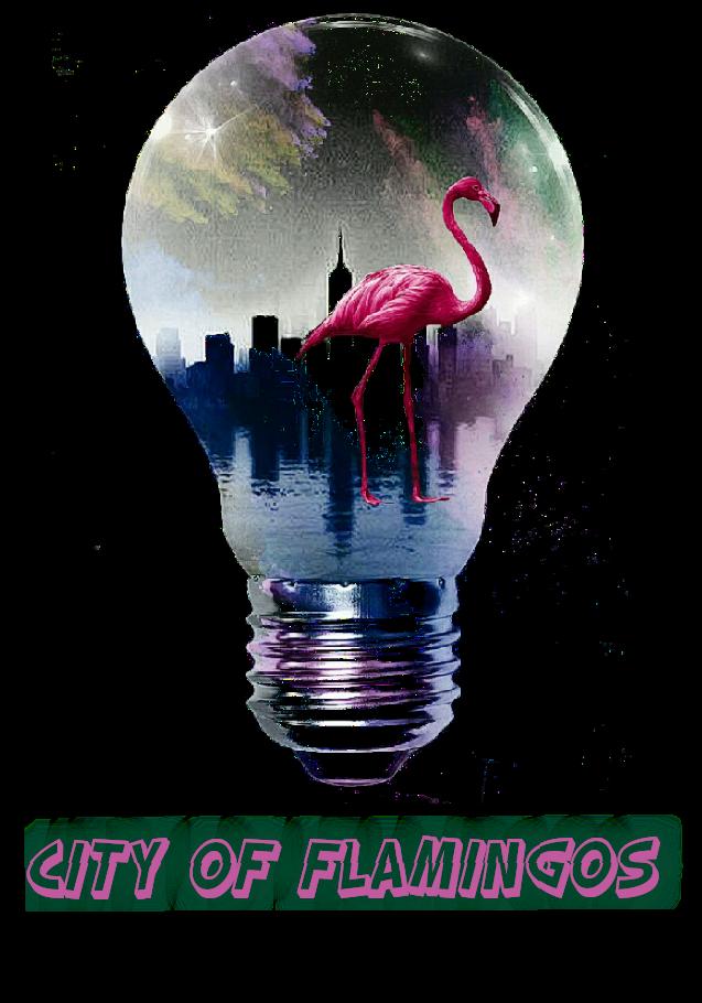 maglietta City of Flamingos