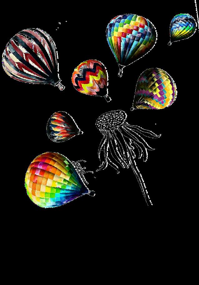 maglietta Soffioni e mongolfiere