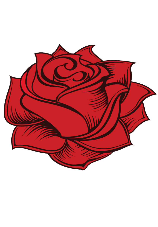 maglietta Rose
