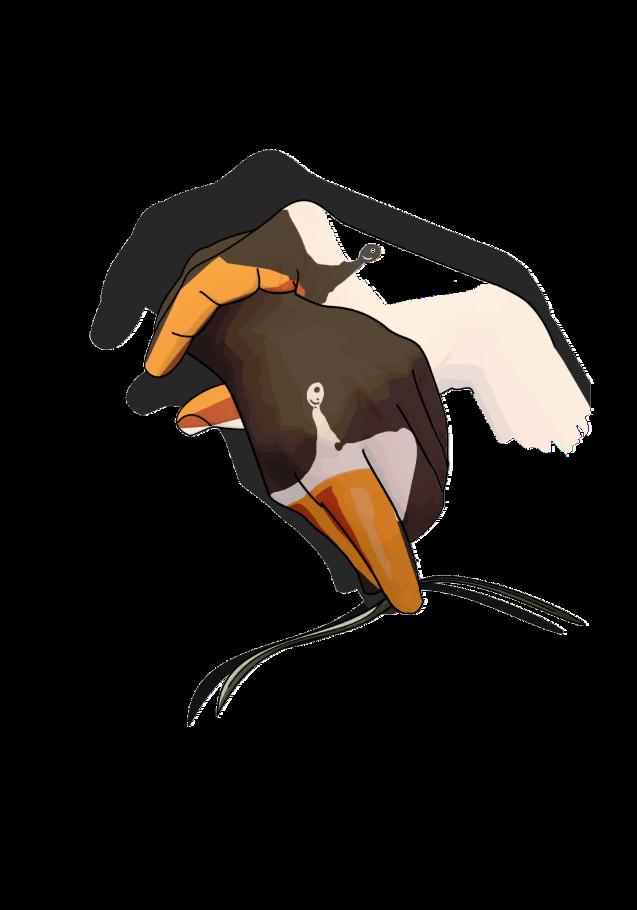 maglietta shadowHelp