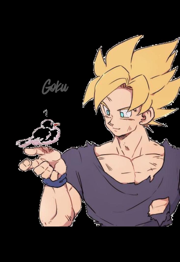 maglietta a t-GokuShirt