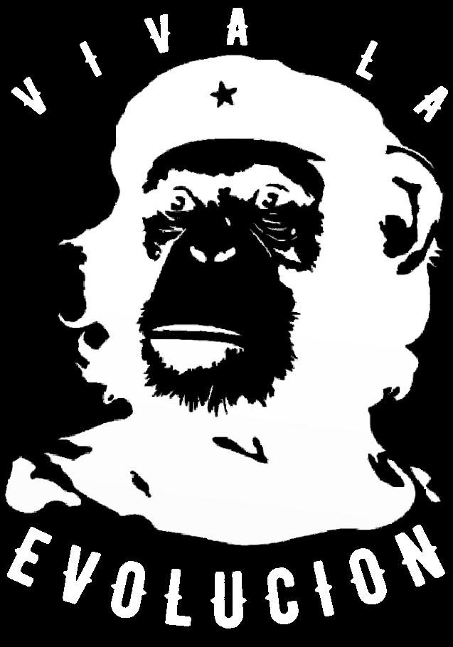 maglietta Evoluciòn