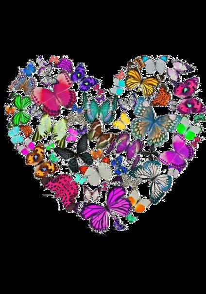 maglietta Farfalle