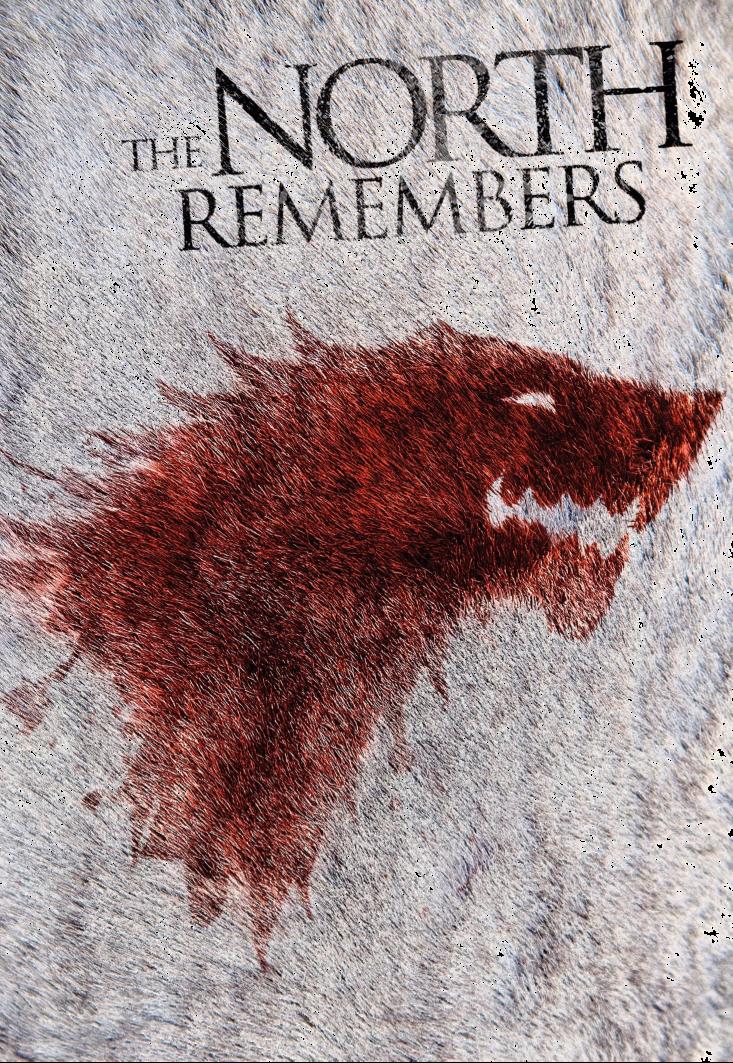 maglietta Game Of Thrones Stark