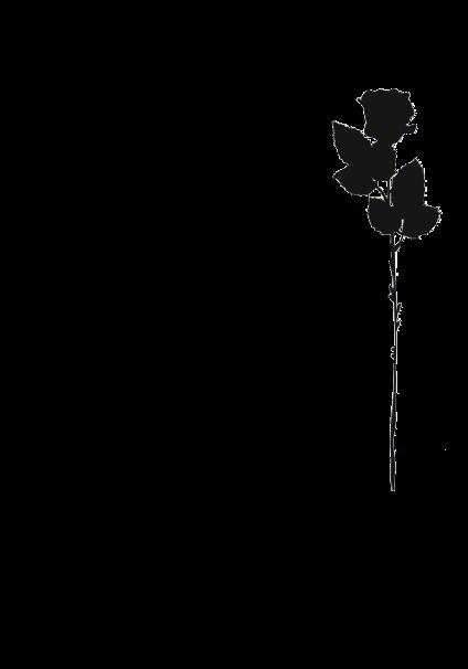 maglietta black rose
