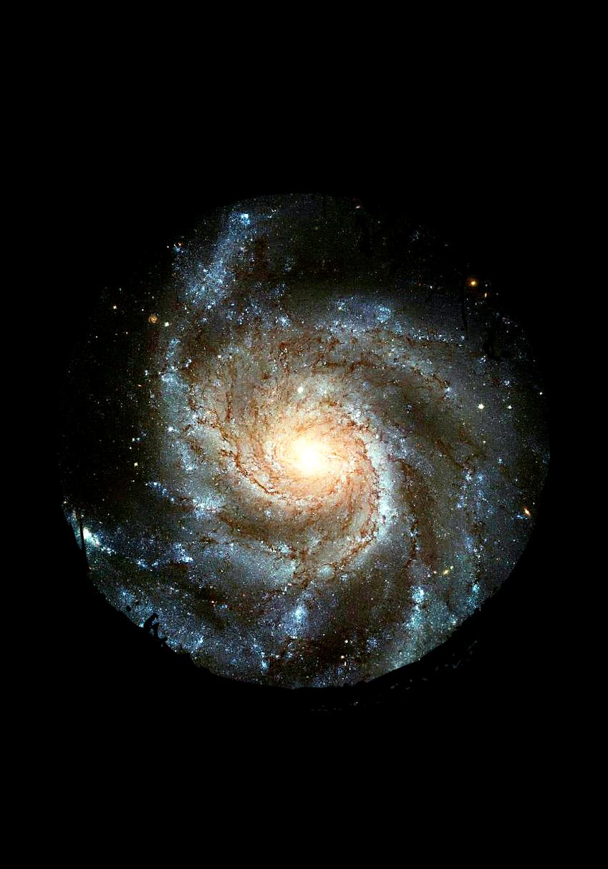 maglietta Galaxy