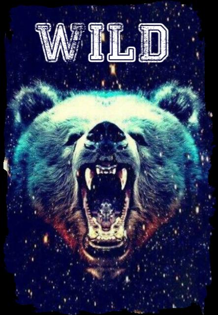 maglietta BEAR WILD