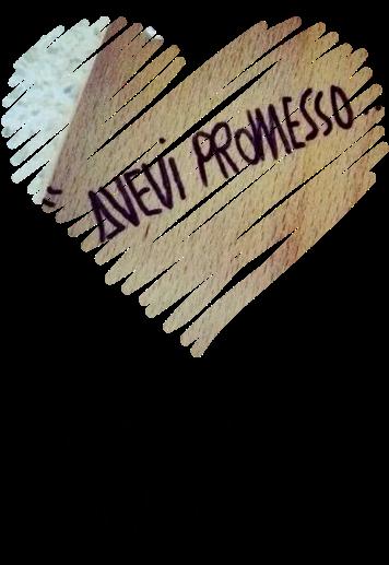 maglietta Avevi promesso