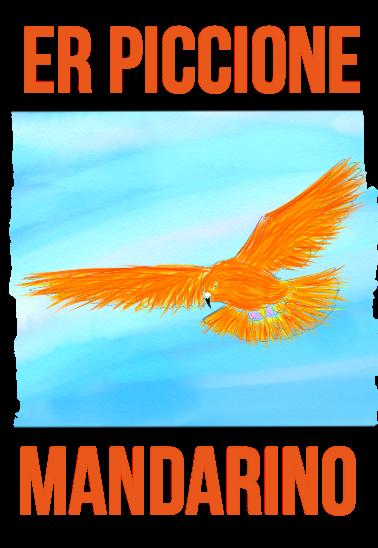 maglietta er piccione mandarino