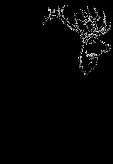 maglietta cervo