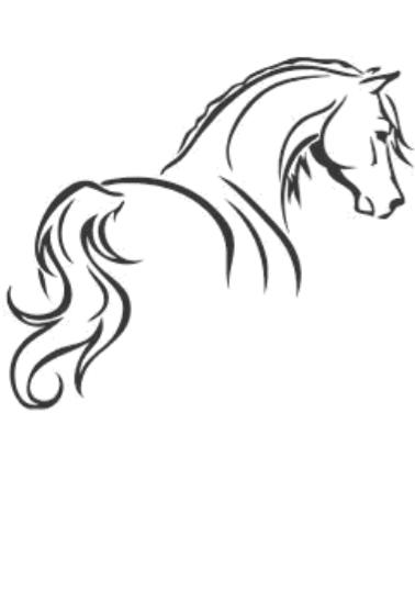 maglietta horse